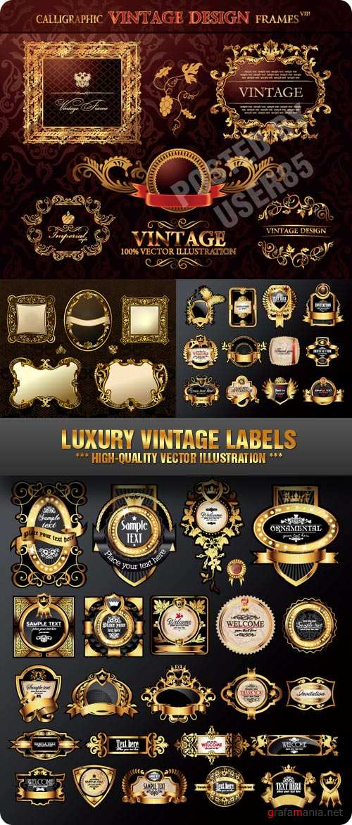Stock Vector - Luxury Vintage Labels