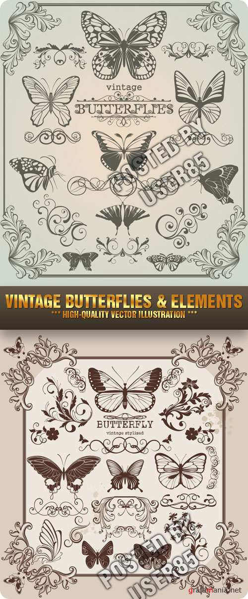 Stock Vector - Vintage Butterflies & Elements