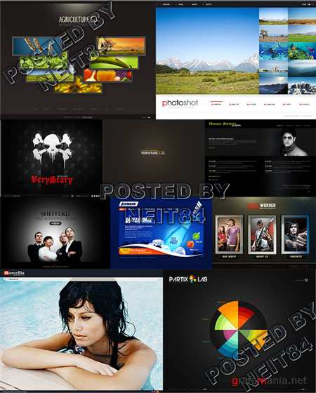 10 Flash Template Website K25 P4