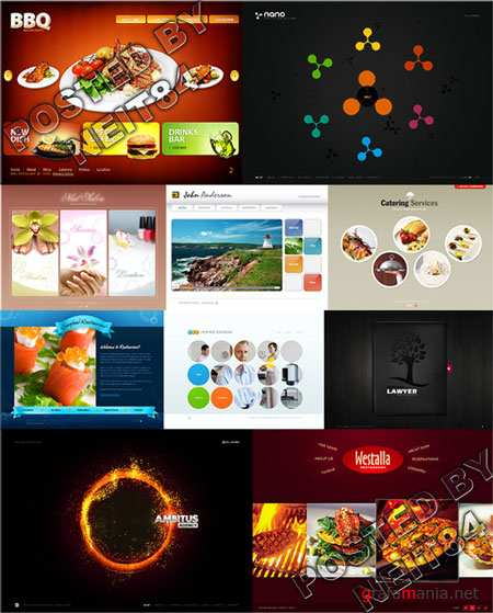 10 Flash Template Website K25 P5