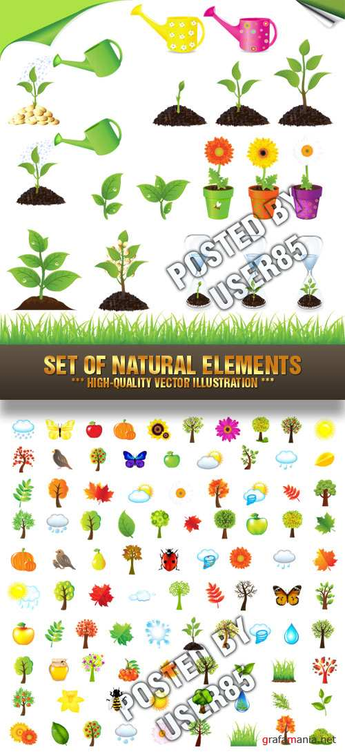 Stock Vector - Set Of Natural Elements
