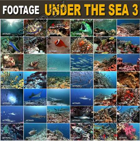 Footage UNDER THE SEA 3 VLine