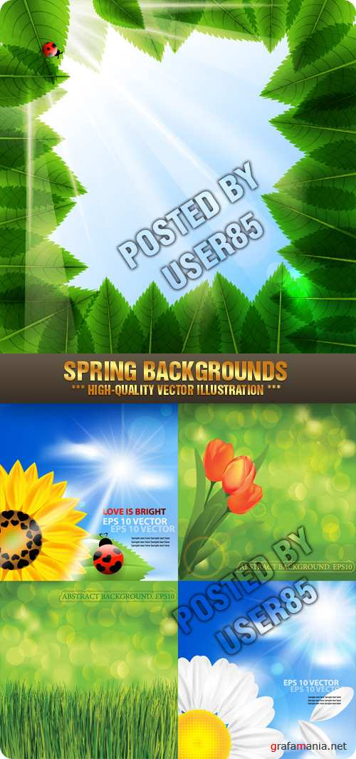 Stock Vector - Spring Backgrounds