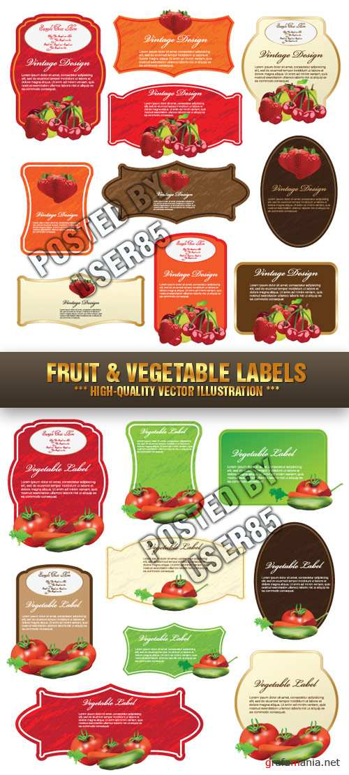 Stock Vector - Fruit & Vegetable Labels
