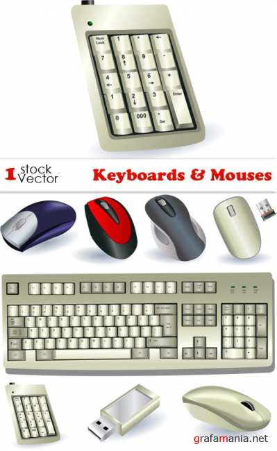Keyboards & Mouses Vector