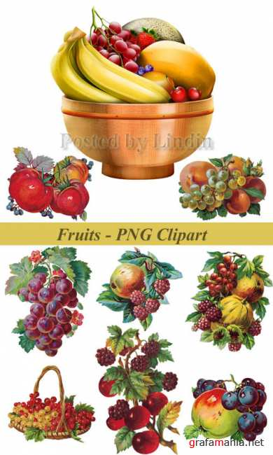 Fruits - PNG Clipart