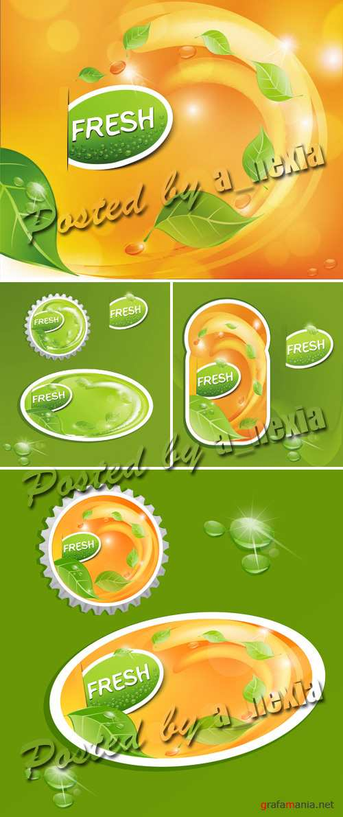 Fresh Juicy Fruit Labels Vector