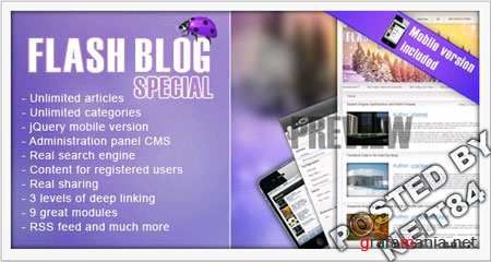 Template Flash Blog Special 155244