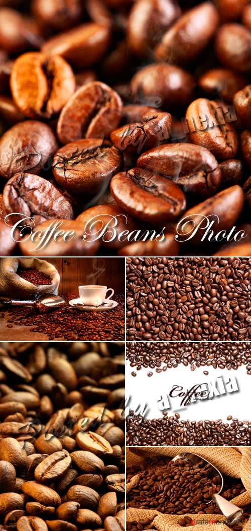 Stock Photo - Coffee Beans