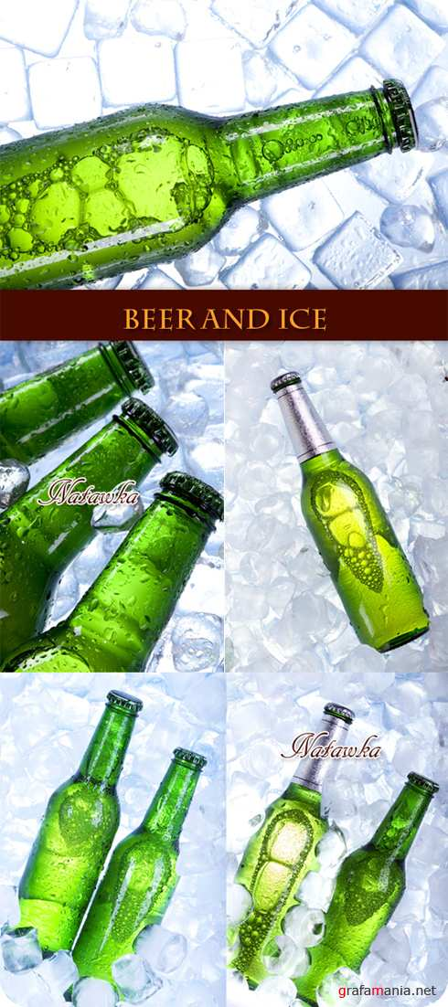 Beer and Ice - Stock Photos