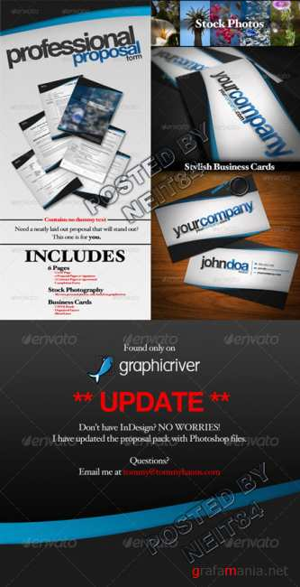Graphicriver Professional Proposal Pack and Business Cards 137381