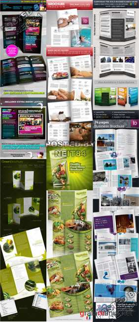 Graphicriver Brochure template Bundle V2