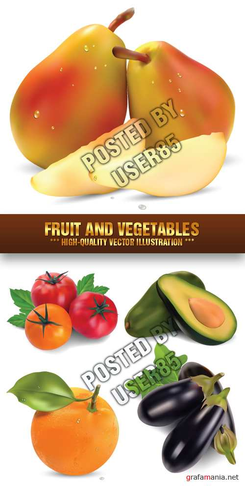 Stock Vector - Fruit and Vegetables