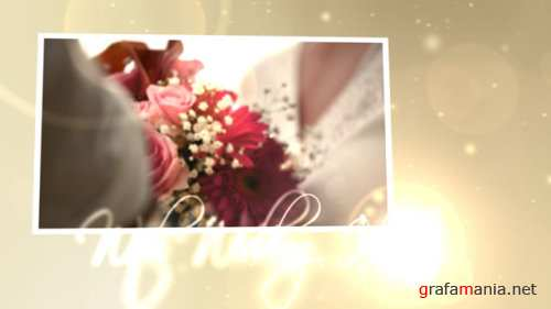 VideoHive Wedding Hearts CS4 153475