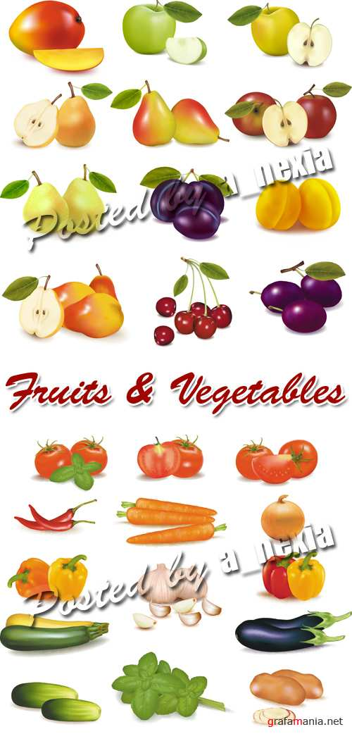 Fruits & Vegetables Vector