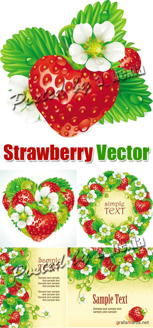 Strawberry Vector 2