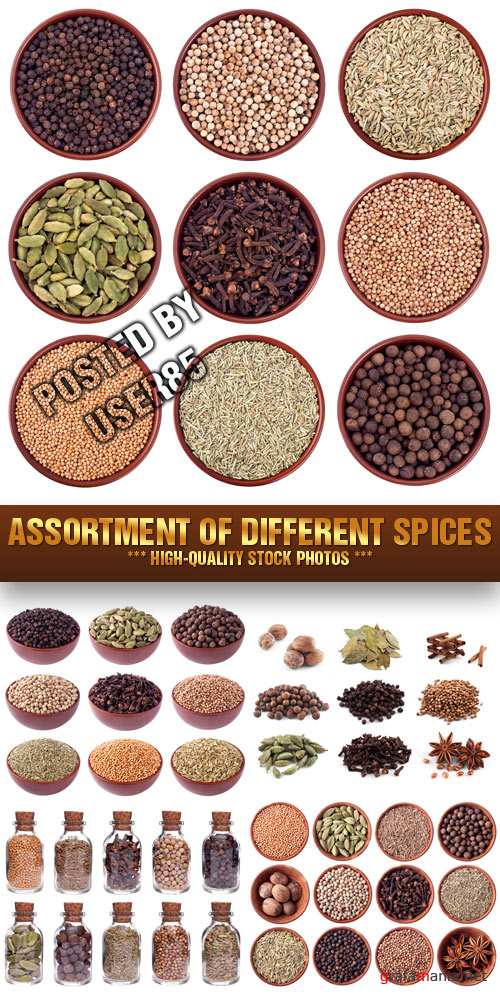 Stock Photo - Assortment of Different Spices