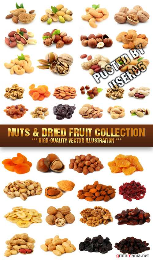 Stock Photo - Nuts & Dried Fruit Collection