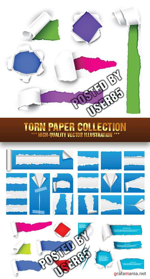 Stock Vector - Torn Paper Collection