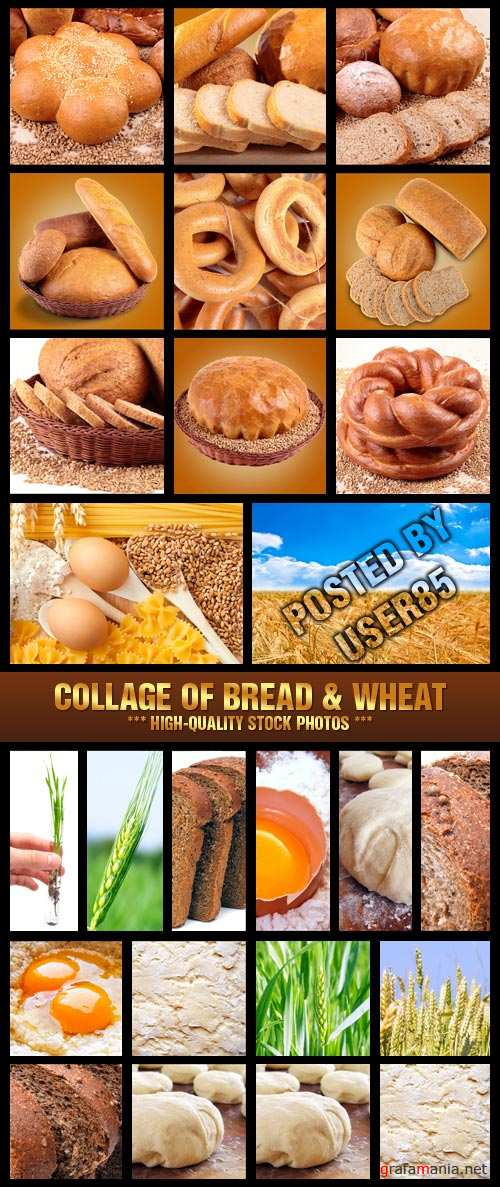 Stock Photo - Collage of Bread & Wheat
