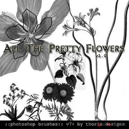 All The Pretty Flowers Brushes