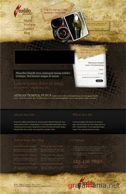 TemplateWorld NexLife - Premium HTML Template - Rip