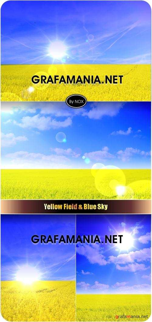 Yellow Field & Blue Sky - Поле, небо