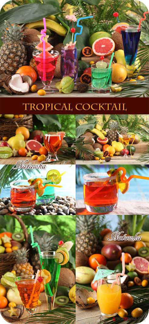 Tropical cocktail - Stock Photo