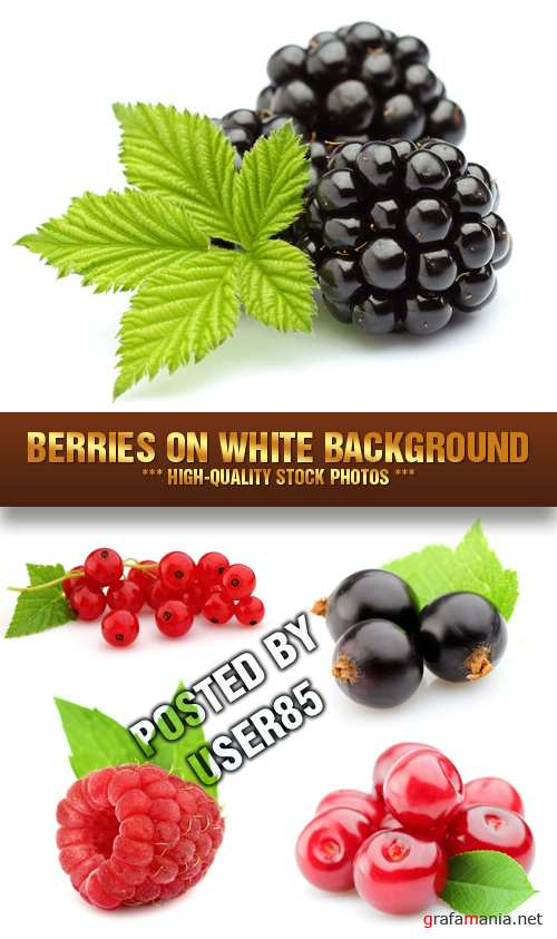Stock Photo - Berries on White Background