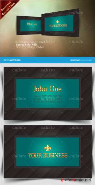 Seextwood Classy business card - GraphicRiver
