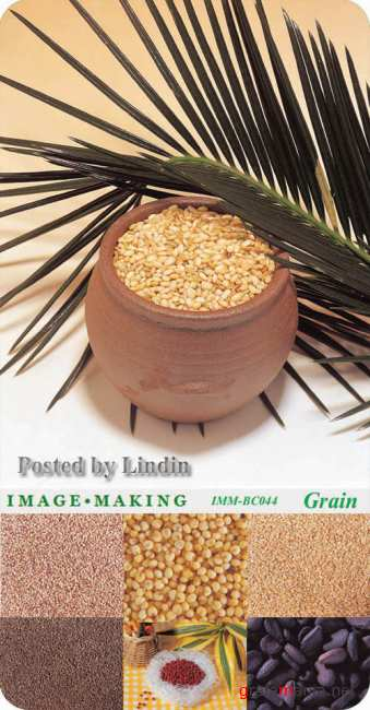 Image Making - Grain