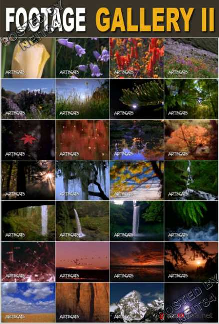Footage Nature Gallery 2 NTSC