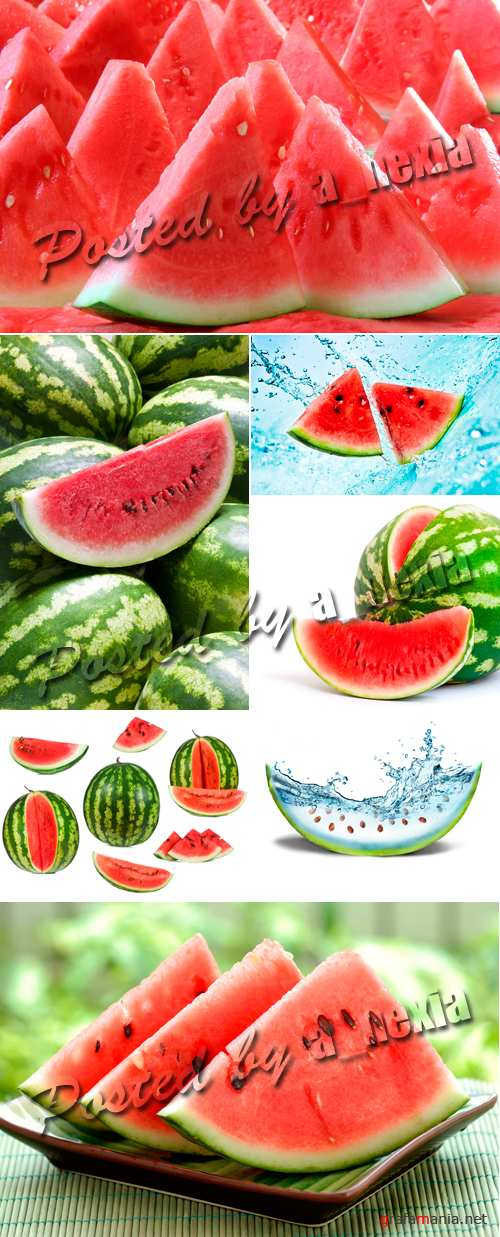 Stock Photo - Watermelon
