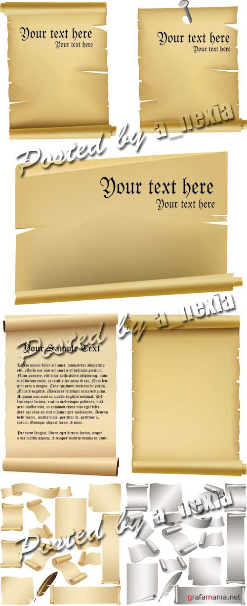 Old Paper Scrolls Vector 2