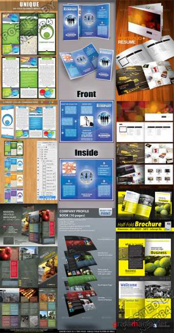 Graphicriver Brochure template Bundle V5
