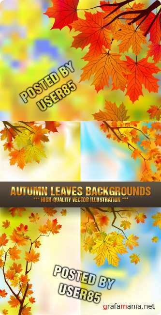 Stock Vector - Autumn Leaves Backgrounds