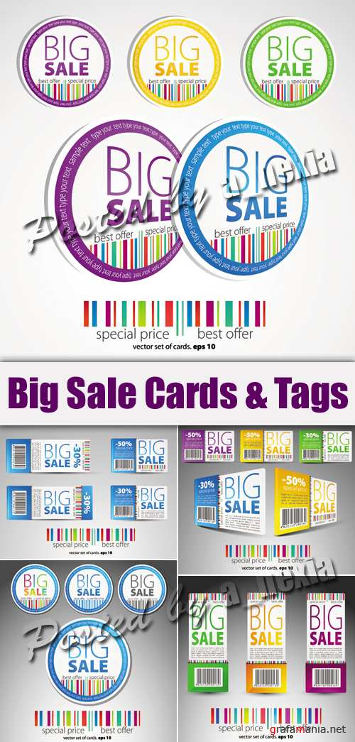 Big Sale Cards & Tags Vector