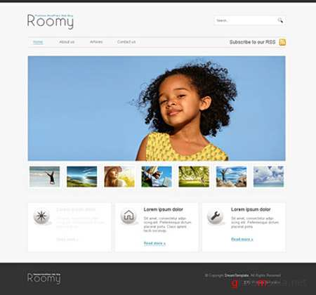 Dynamic CSS Templates Web Blog Corporate Roomy