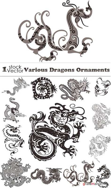 Various Dragons Ornaments Vector