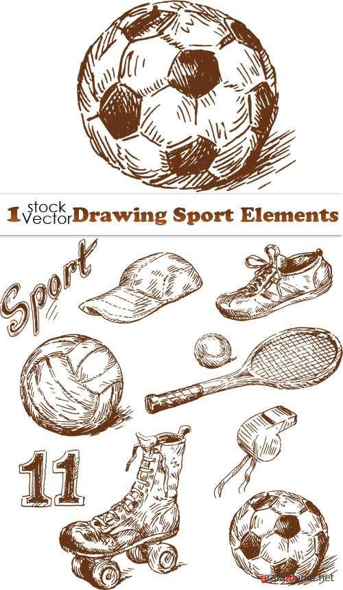 Drawing Sport Elements Vector