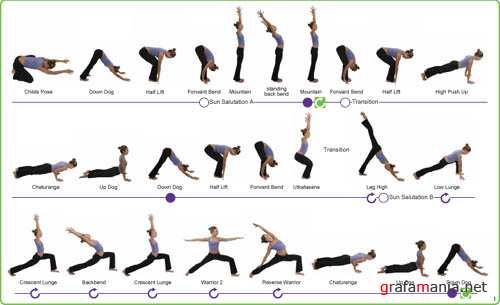 Yoga Asana Sequence Charts