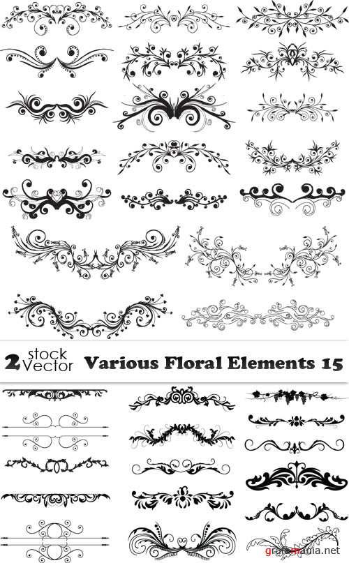 Vectors - Various Floral Elements 15