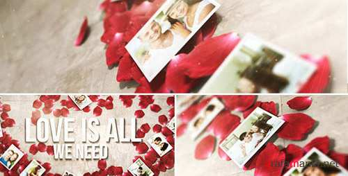 Rose Petals Heart - Photo Gallery - Project for After Effects (Videohive)