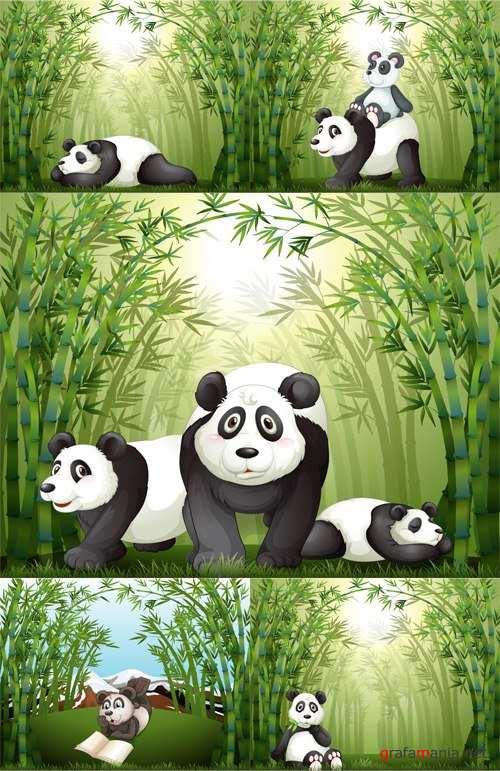 Pandas in the bamboo - Панды в бамбуке