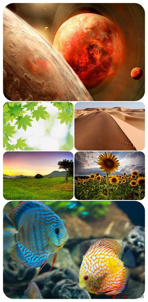 Beautiful Mixed Wallpapers Pack 277