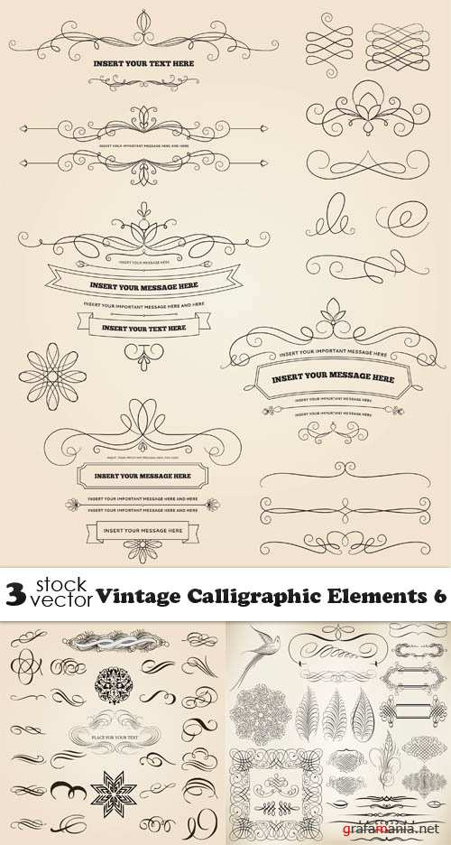 Vectors - Vintage Calligraphic Elements 6