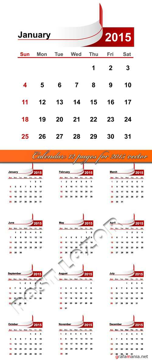 Calendar 12 pages for 2015 vector