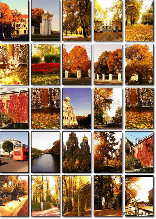 Golden Autumn in St. Petersburg - Stock photo