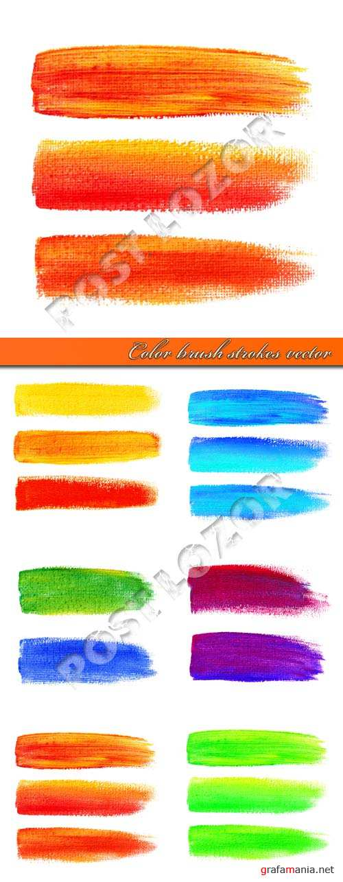 Color brush strokes vector