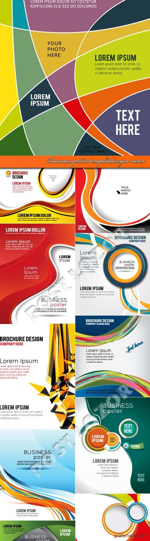 Business poster template design vector
